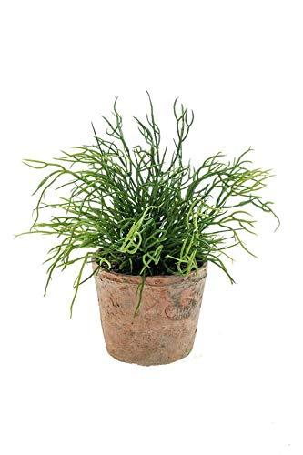 artplants.de Cactus de plástico rhipsalis Potosi en Maceta de Terracota, Verde, 20cm...