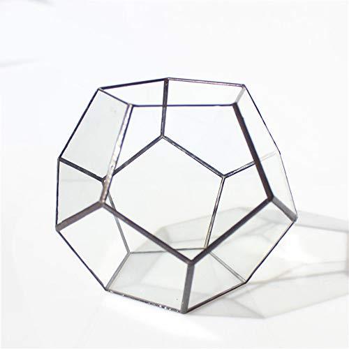 MINGZE Pentagon Dodecaedro geométrico terrario, suculenta terrario, Cristal...