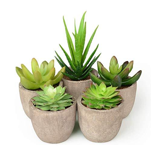 Abree Plantas Suculentas Artificiales 5PCS Jardinera Suculenta Falso Plantas de...