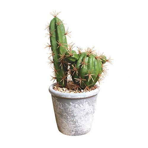 Homeofying 1 Bonsái artificial de cactus suculento para manualidades, escenario,...
