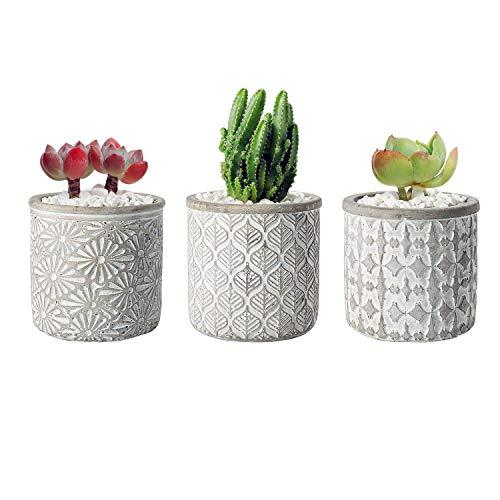 T4U 10.5CM Macetas para Cactus de Cemento con Plato de Bambú Paquete de 3, Maceteros...