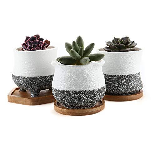 T4U Rachel's Choice Estilo Coreano Cerámico Ollas Suculentas Plantador de Cactus de...