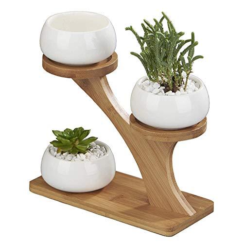Maceta de flor de cactus suculenta redonda redonda de cerámica decorativa blanca...