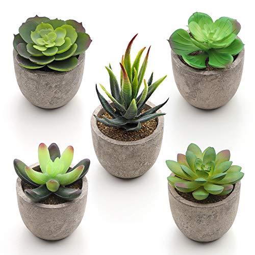 SONGMICS Plantas Suculentas Artificiales en Maceta, 5 Piezas, Plantas Decorativas,...