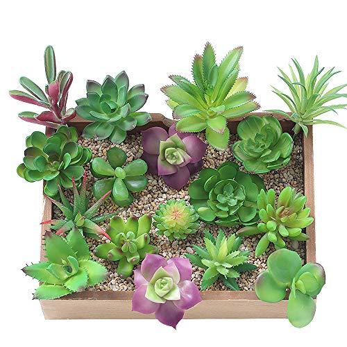 KUUQA 16 piezas de plantas artificiales carnosas mixtas, tallos de decoración sin...