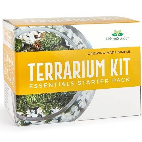 Kit de terrario para plantas suculentas y cactus. Incluye suelo para cactus, musgo,...