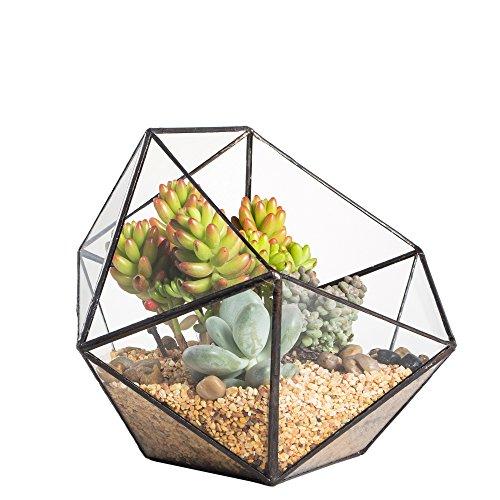 Moderno terrario poliédrico triangular de cristal, de fabricación artesanal, para...