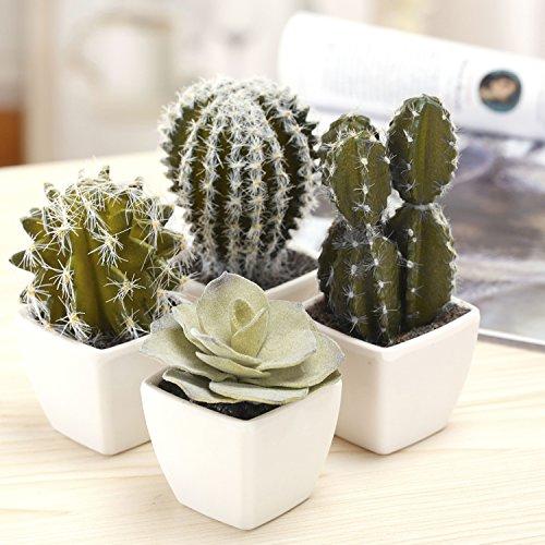 MyGift Surtido de cactus artificiales de 12,7 cm, surtido de cactus artificiales en...