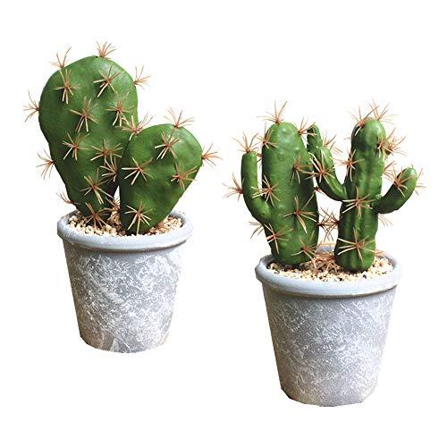 Fycooler Plantas suculentas artificiales en macetas Cactus falso Suculentas falsas...