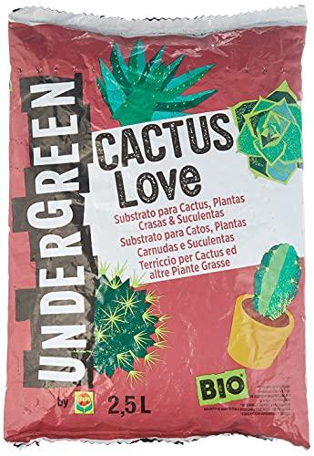 UNDERGREEN Love Cactus, Plantas crasas y suculentas, Apto para Agricultura...