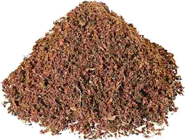 fibra de coco plantas