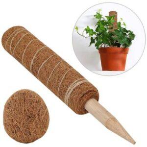 precio fibra coco plantas