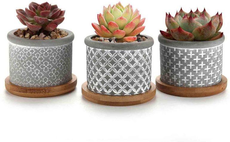 oferta maceta cemento cactus