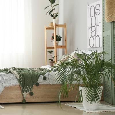 ¿Cómo crear un espacio verde en tu vivienda?